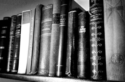 Bücher im Flur