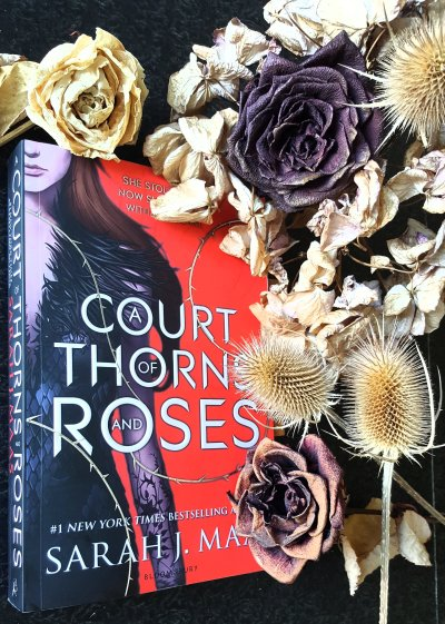A Court of Thorns and Roses von Sarah J. Maas