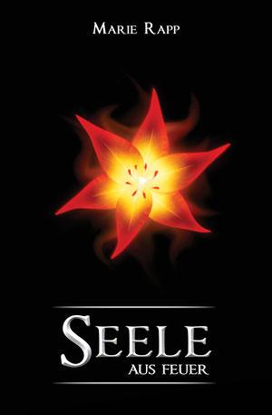 seele-aus-feuer-seelen-trilogie