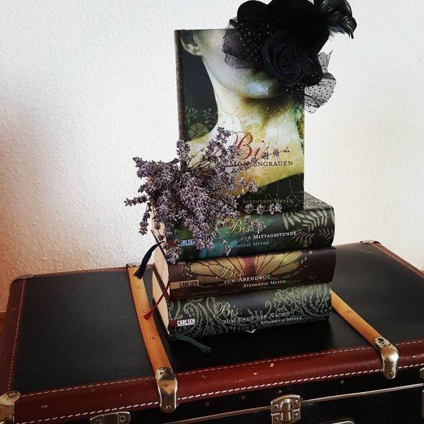 Biss-Reihe // Stephenie Meyer